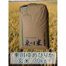 平成29年 北海道東川町産 ゆめぴりか 一等米 (F次) 玄米 30kg