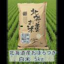 平成29年 北海道産 おぼろづき  白米 5kg