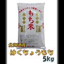 平成29年 北海道産 はくちょうもち 白米 5kg