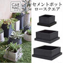 新色ブラック!セメントポットロースクエアブラック Lサイズ多肉植物や塊根植物に