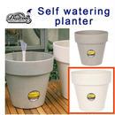 自動給水 植木鉢 SELF WATERING PLANTER ダルトン DULTON 2018年新作 自然由来のポット Lサイズ Bamboo cream
