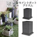 新色ブラック! 多肉植物やパキポディウムなどの塊根植物に セメントポットプリズムブラック Mサイズ おしゃれな鉢