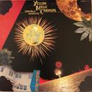 TIN PAN ALLEY / YELLOW MAGIC CARNIVAL  (LP)