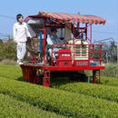 オーガニック粉末緑茶 新茶  Organic Powder Green Tea