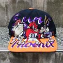 NBA PHOENIX SUNS x LOONEY TUNES/フェニックスサンズ x ルーニーチューンズ 刺繍キャップ 90年代 (USED)