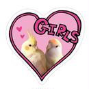 ステッカー GIRLS