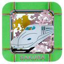 Sakura さくら