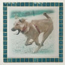 フォギーカラー/エメラルド(XL)◆Tile Picture Frame(XL)/Foggy Tone/EMERALD◆