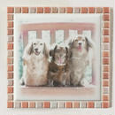 ブライトカラー/サーモンピンク(XL)◆Tile Picture Frame(XL)/Bright Tone/SALMON PINK◆