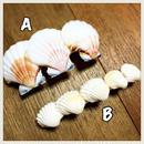 shell hair accessory