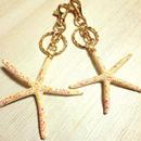 painted starfish key holder