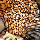 Guatemala Azotea farm Antigua SHB / グアテマラ Azotea 農園 Antigua SHB 200g  ☆ オンラインショップ限定販売