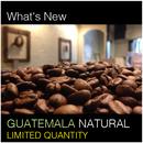 Guatemala Natural / グアテマラ ナチュラル 200g  ☆数量限定販売