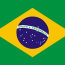 「柔らかい苦味」ブラジル バージングランデ農園 200g
