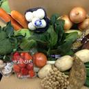 野菜&果物セット