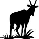 カスタムナビD0064