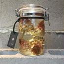 Lab bottle plants 1ℓ (artichoke)