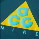 新品 NIKE ACG Sweat Shirts GREEN(国内未入荷カラー)/GRAY