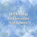 [PANAMA]  La Florentina San Ramon(100g)