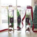 "Herbarium ""préparation d'hiver""【Lサイズ】 クリスマスが待ち遠しいウィンターハーバリウム"