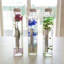 """Herbarium """"flower dressing"""" ゆらめくお花が美しいカラフルハーバリウム"""