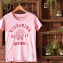 コットンTシャツ2017(Pink)