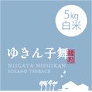 【 H30年産新米】【レギュラーライン】  そら野テラスの『ゆきん子舞』 白米 5kg