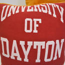 REBIRTH CUSHION/UNIVERSITY OF DAYTON