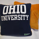 REBIRTH CUSHION/OHIO UNIVERSITY