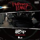 祀SP / PERFECT WORLD