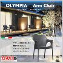 タカショー【SCAB スキャブ】オリンピア アームチェア ≪グレー≫ TK-1182
