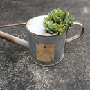 Junk Watering Can