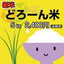 【平成30年産コシヒカリ新米100%】どろーん米 5kg 精米