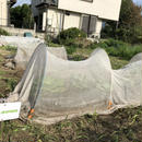 【E-MYFARM 区画No. 007】東京都世田谷区 きたからすやま農園野菜栽培区画