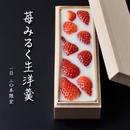 <2月9日発送>苺みるく生洋羹