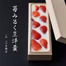 <2月12日発送>苺みるく生洋羹