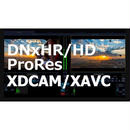 cineXtools Standard  +  XDCAM/XAVC  初年度サブスクリプション・ライセンス