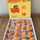 限定販売10箱             阿波半田 あたご柿(完全しぶぬき)     1箱20個入り