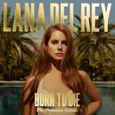 新品レコード ラナ・デル・レイ Lana Del Rey Born To Die - The Paradise Edition アナログ 輸入盤