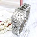 Cartier カルティエ パンテール  天然ダイヤモンド  95P 二重ダイヤ ベゼル
