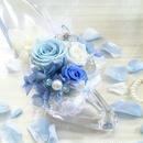 シンデレラのガラスの靴(blue ver)