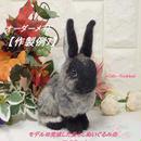 【作製例7】こちらは商品ではございませんm(__)m 作製へのご依頼はお問い合わせください。 世界で一つの「愛らしうさぎ」(羊毛フェルト Ornament) With-Rabbit◆ウィズラビット
