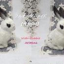 【作製例1】世界で一つの「愛らしうさぎ」(羊毛フェルトOrnament)を作製いたします! With-Rabbit◆ウィズラビット
