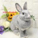 【作製例5】世界で一つの「愛らしうさぎ」(羊毛フェルト Ornament)を作製いたします! With-Rabbit◆ウィズラビット