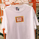 PA30339  ソフトタッチinプリンTEE