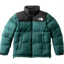 THE NORTH FACE Nuptse Jacket ND91841