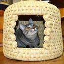 山古志-猫つぐら【限定2台入荷しました】山古志の手シゴト~「猫つぐら」