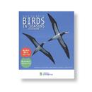 BIRDS  IN SEASONS 2019