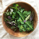 HOLY BASIL &  HERB MIX
