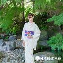 0179 夏着物(薄物) 小紋 絽 正絹